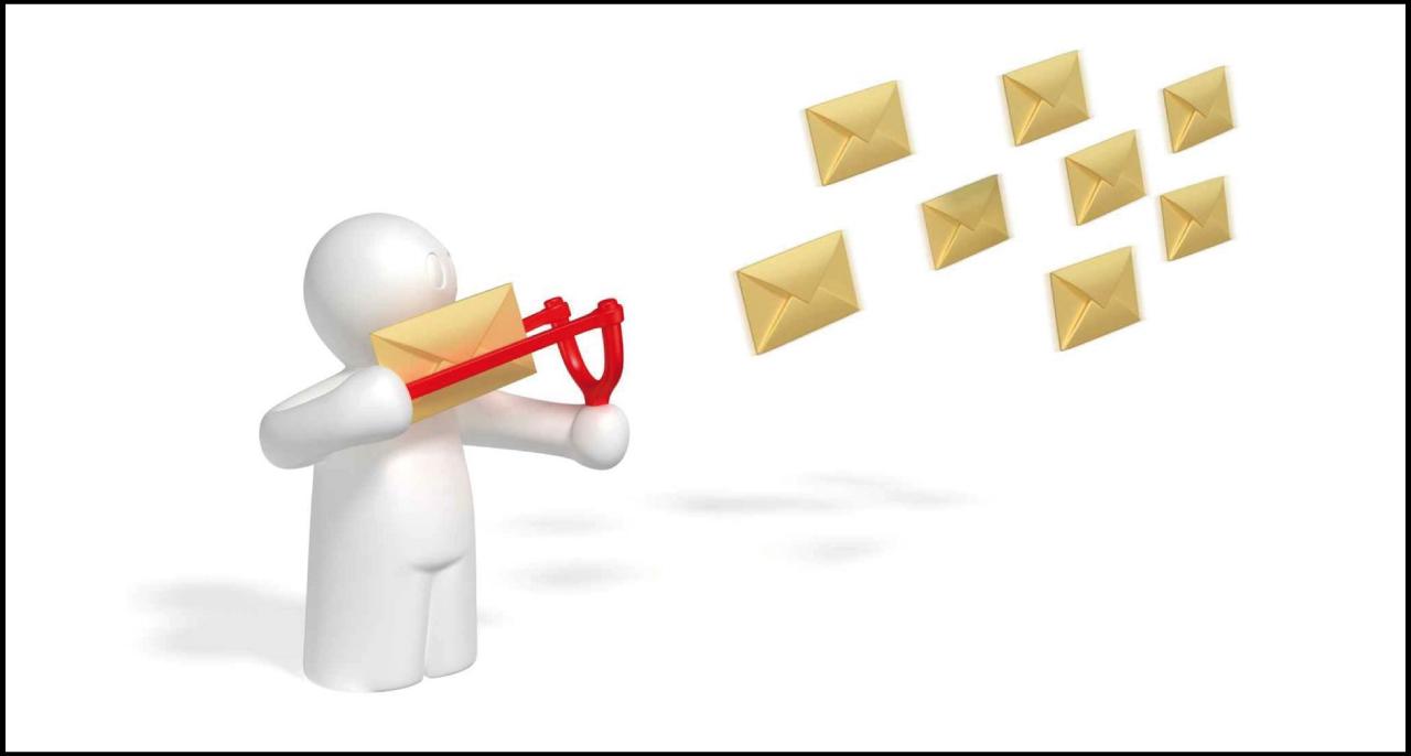 Newsletter – Sms